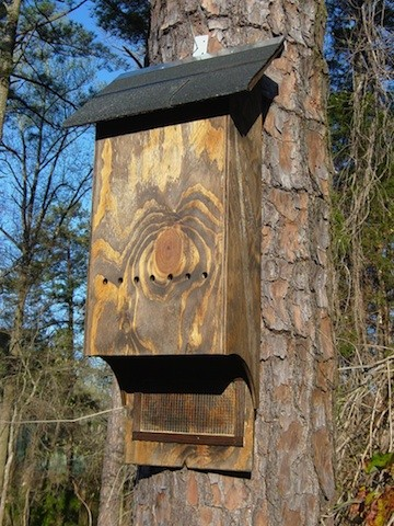 MEDIUM BAT HOUSE DARK