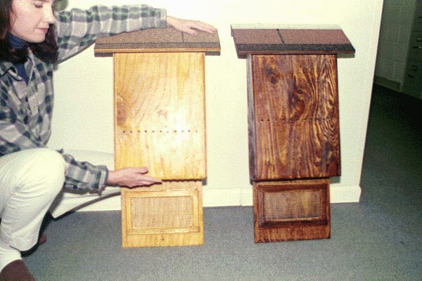 MEDIUM BAT HOUSES